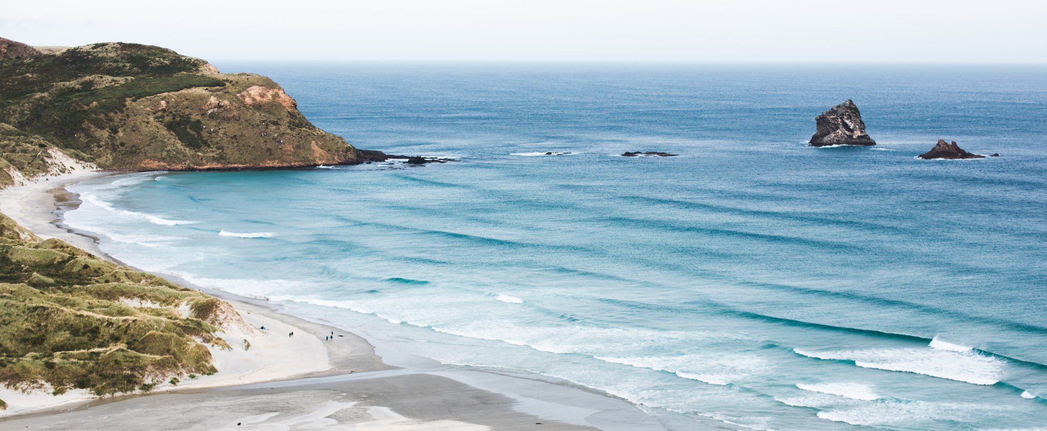 Sandfly Bay-Dunedin-Sarah Galvan Photographe