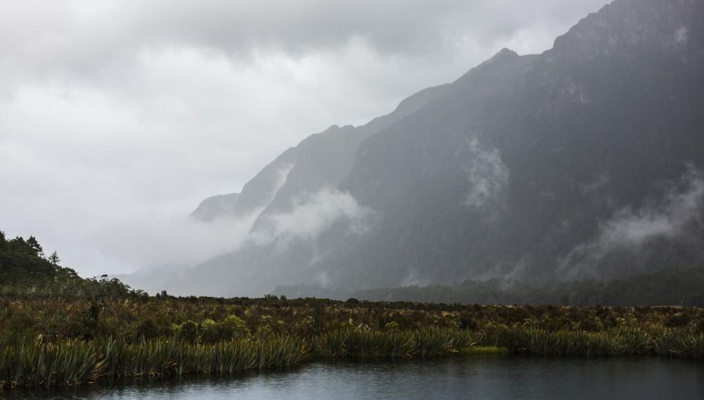 Arret-Milford Sounds-Sarah Galvan Photographe