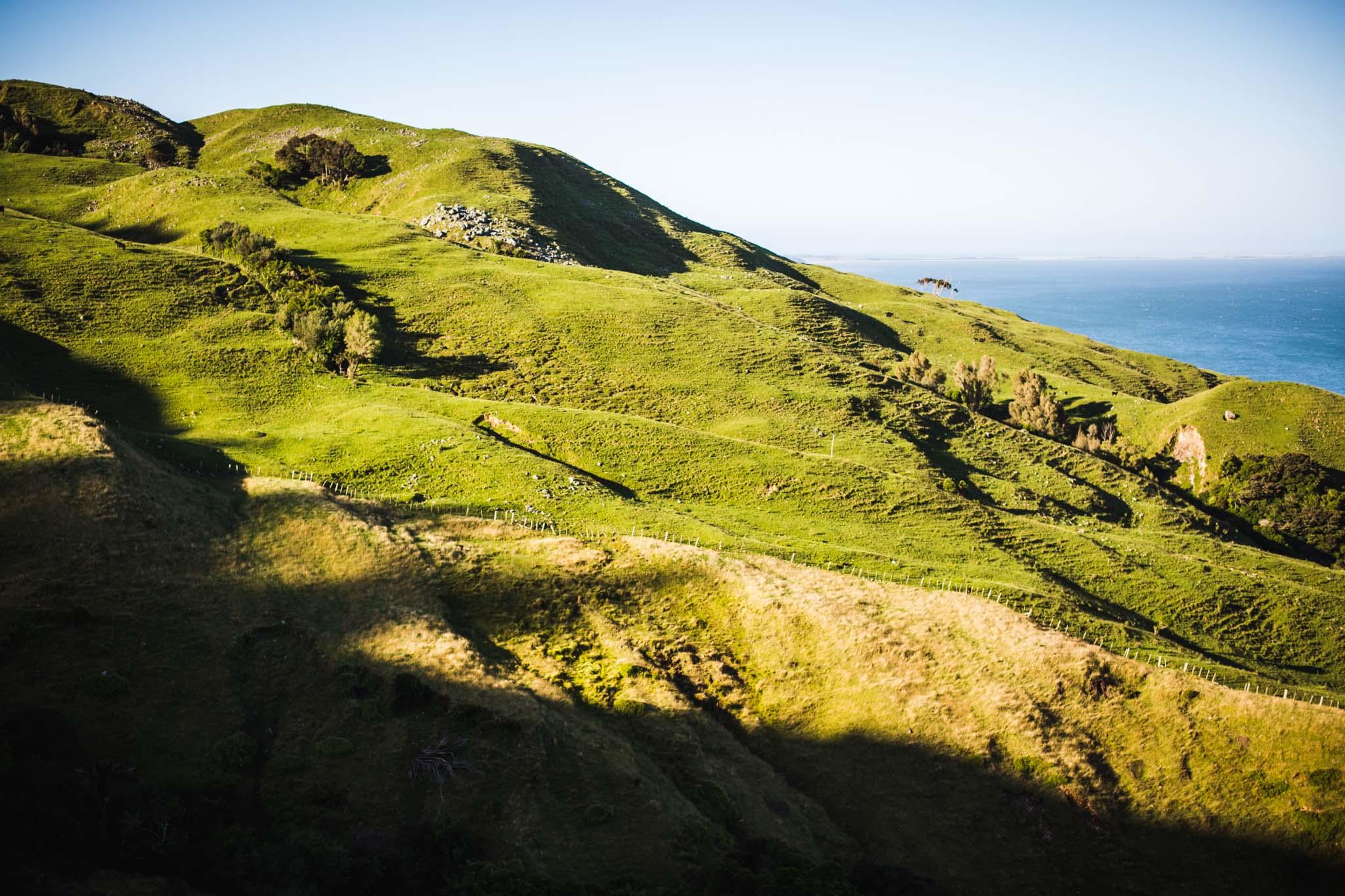 Les collines de Collingwood-New Zealand-Sarah Galvan Photographe
