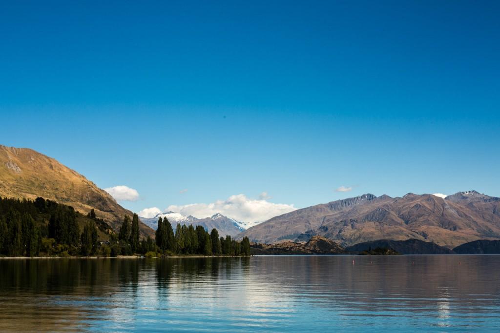 Wanaka Lake day-New Zealand-wanaka-Sarah Galvan Photographe