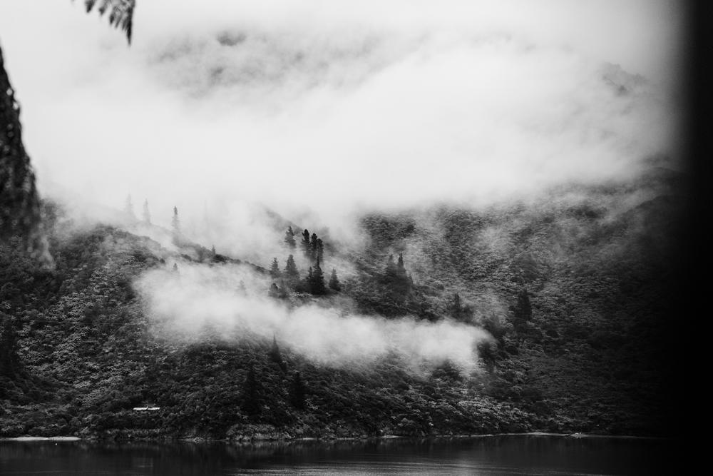 MARLBOROUGH SOUNDS5 _Sarah Galvan Photographe