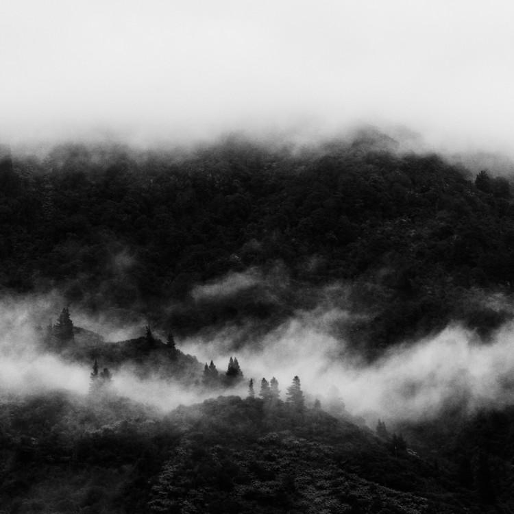 MARLBOROUGH SOUNDS6_Sarah Galvan Photographe